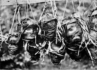 Victims of headhunting practices of the Dayak people