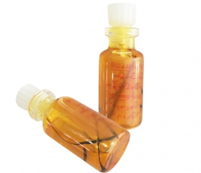 Empowered Herbal Oil offering Outstanding Magical Aptitude for Learning and Understanding